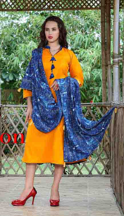SMC RAJWADI 01-D NO 2 STYLISH WOMEN KURTY