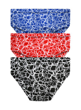 Printed Inner Elastic Panty Pack of 3 -KS004-Pack 17