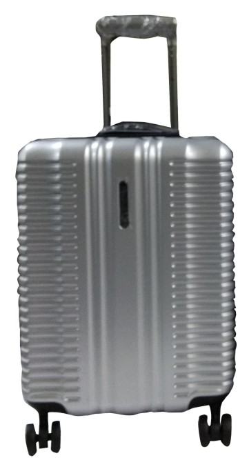 "TB PLATINUM 102 20""-SILVER TRAVEL BAG"